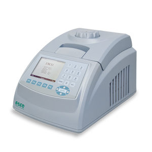 minipro Thermal Cycler