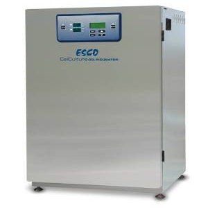 CO2 stainless Steel incubator